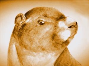 Michonne Marmot
