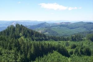 Oregon Landscape BLM